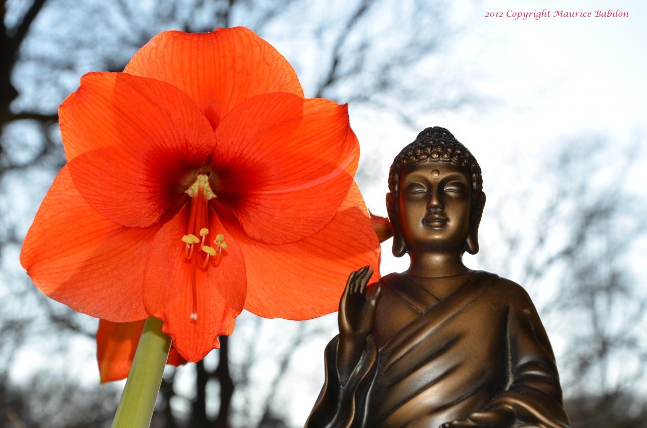 020 Soyez Zen , Cool , Relax , und ohne Stress im leben
