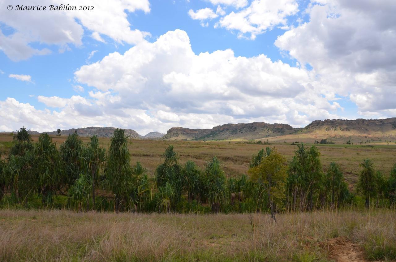 En route vers la région de Horombe