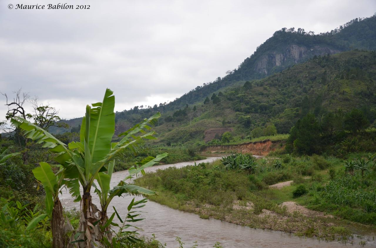 Région de Ranomafana , Sud de Madagascar