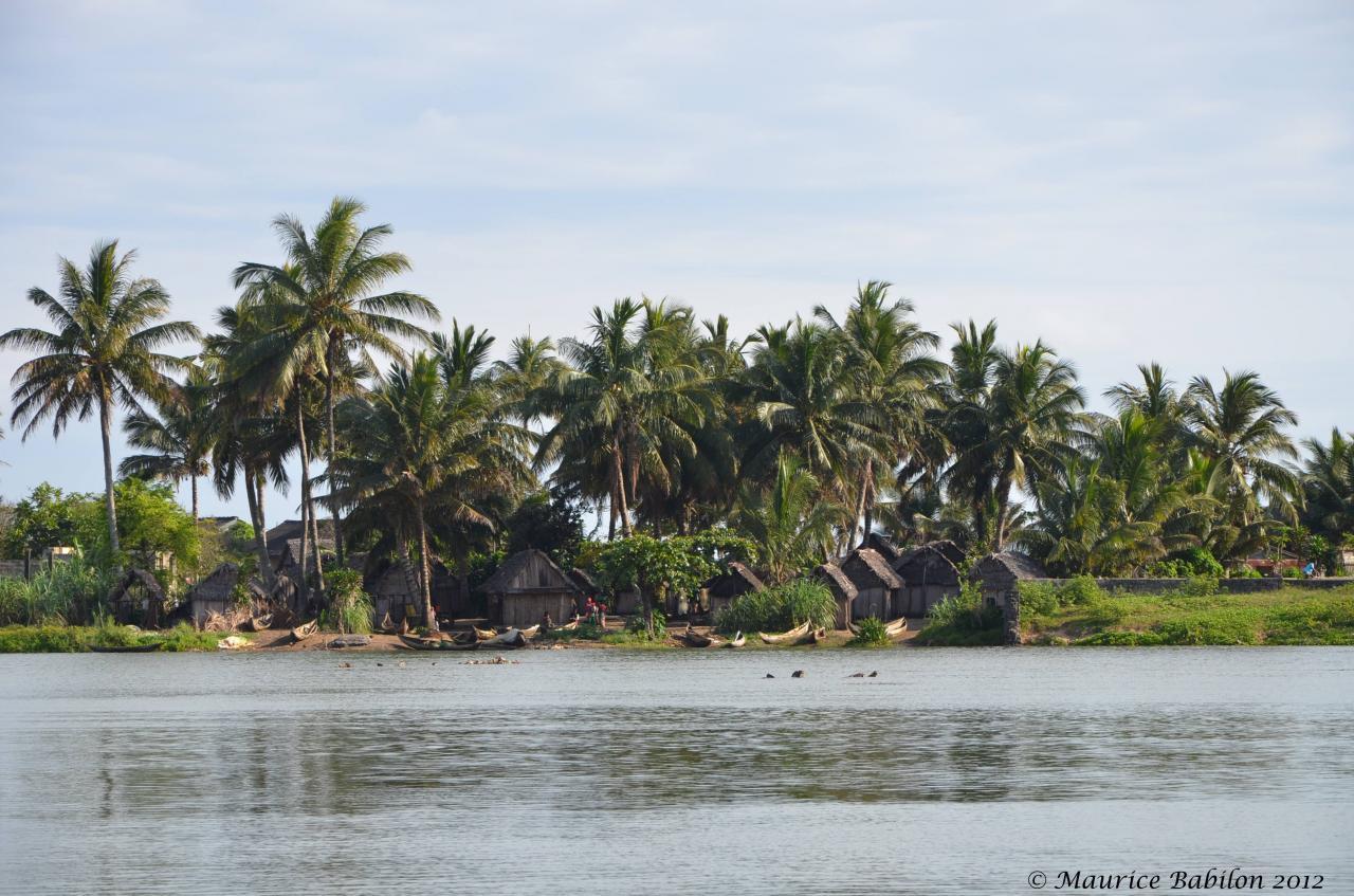 Région de Manakara , vers le canal des Pangalanes