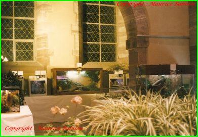 Expo de Huningue 1988