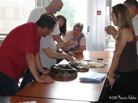 Formation NAC's : Les nouveaux Animaux de compagnie - FCO Police , CNFPT à Colmar
