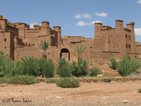 Sud Marocain 2010