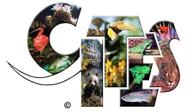 logo-cites-1.jpg