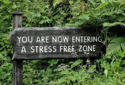 stress-zone.jpg